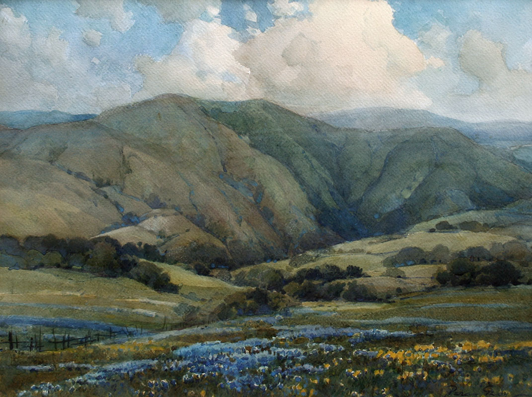 Gray – Marin Landscape w-Poppies and Lupine 15.5×20.5 8024